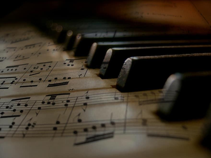 Koncert vážné hudby